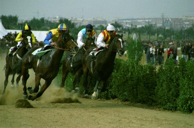 cavalls.03.jpg
